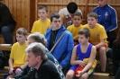 Donau-Sparkassen-Cup 2014